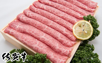 E-10最高級ブランド銘柄「佐賀牛」しゃぶしゃぶ・すき焼き用500g×2