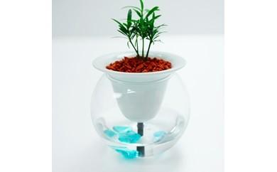 KYUEMON 自動給水型プランター SUISUI -スイスイ- + 丸型グラスセット