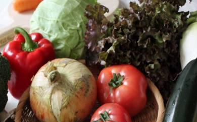 B-1205_綾の美味しいとこどり野菜セット