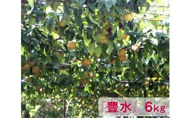 No.019 梨『豊水』 6kg