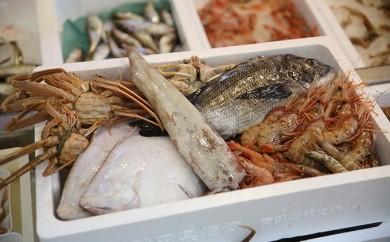 [№5685-0105]新鮮!天然!にかほ市産旬の魚詰め合わせ(切り身)