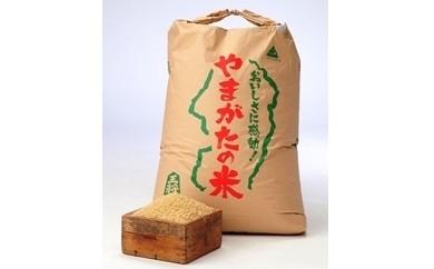 30F1001 はえぬき玄米(30年産米)