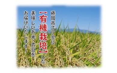 A-22 有機米【白米】2㎏と有機青大豆のセット