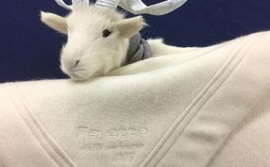 [№4631-0794]ホワイトカシミヤ毛布