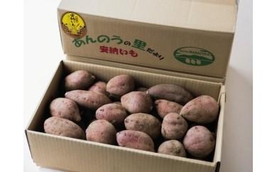 特典番号01.種子島安納いも(生いも5kg) 340pt