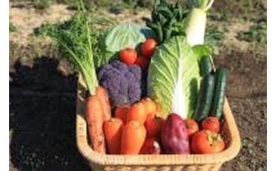 野菜・果物などの詰め合わせ