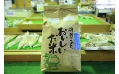 菊陽町のお米