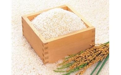 【ふるさと納税】10-1ちば緑耕舎 栄町産特別栽培米コシヒカリ15㎏(5㎏×3)30年産新米100セット予約開始
