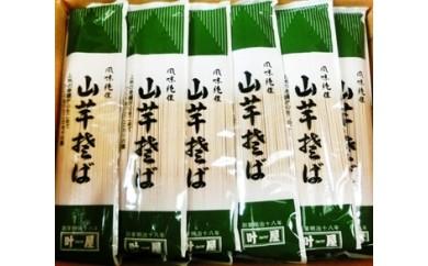 【特産品B】16B15  山芋そば