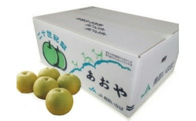 【10-02A】青谷町産 贈答用20世紀梨 5.0kg (9月上旬~中旬発送)