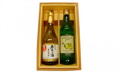 [№5663-0034]玉川村民話井戸掘り五平の酒と玉川村特産さるなしワインセット