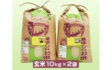 No.024 潮来産 コシヒカリ玄米 20kg