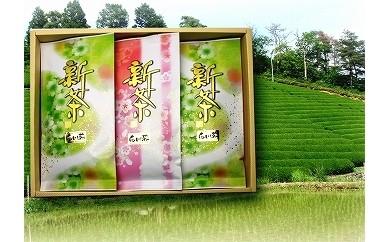 №36 白川茶 新茶詰め合わせ