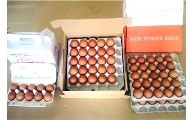 15-A 鶏卵(ギフト用化粧箱50ヶ入り×2回発送)