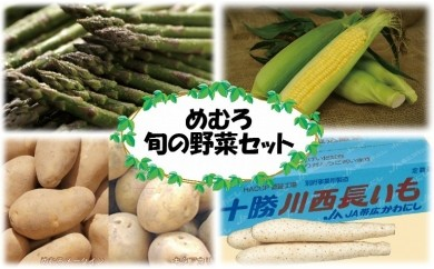 【B-1】めむろ旬の野菜セット(春夏秋 計4回)