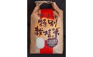 A-3 天竺米(3kg)