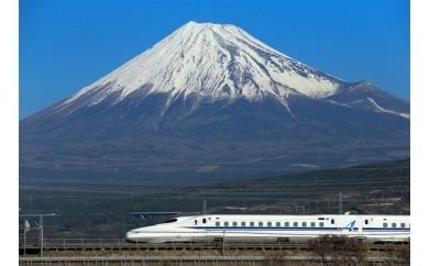 ふるさと大垣へ帰ろうプラン(新横浜駅発着)