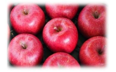 りんご詰め合わせ(5kg:数量限定)