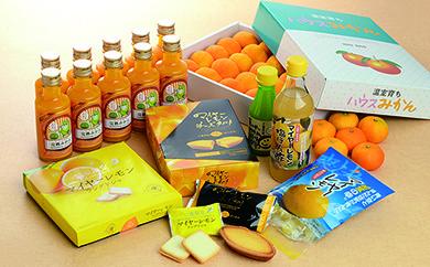 D-03 季節のみかんとみかんジュース&マイヤーレモン商品詰め合せセット
