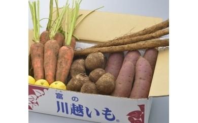 1-001 落ち葉野菜セット