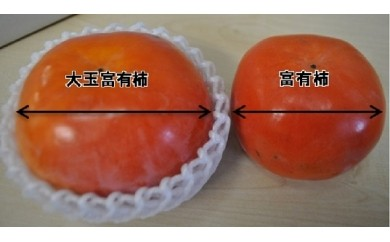 A09 大玉富有柿