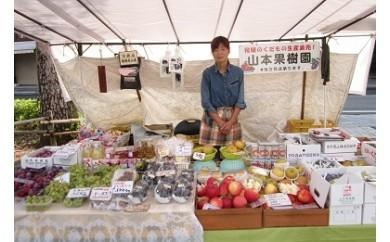 B15 山本果樹園の季節の果物セット