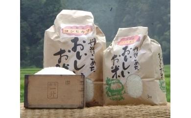 A19 天野米(コシヒカリ)