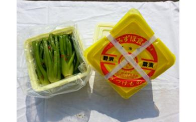 [C06]野沢菜漬 タル