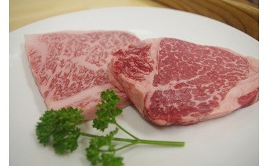 B-3.北出精肉店 熟成ロース&フィレステーキ肉 セット 300g相当