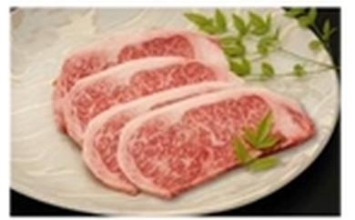 25 佐賀和牛ステーキ 牛肉240g×3枚