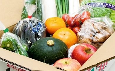 [№5644-0071]福島県伊達の農家応援 野菜果物詰め合わせ