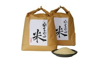16 コシヒカリ・ヒノヒカリ食べ比べセット 8kg