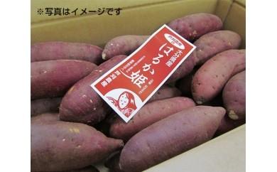 No.005 甘藷(はるか姫)10kg