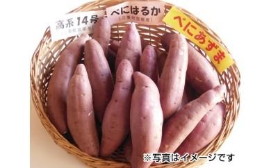 No.002 三重町産 さつまいも食べ比べセット