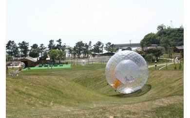 №82-10芦北海浜総合公園ご招待券A