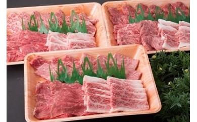 507.鳥取和牛 大ボリューム焼肉セット