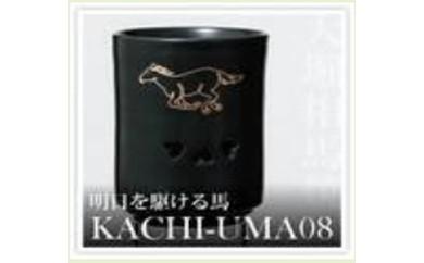 KACHI-UMA8