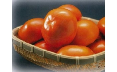 [№5787-0001]富有柿贈答用12個入り