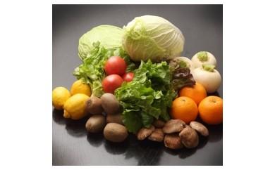 【A-008】季節の野菜詰め合わせ