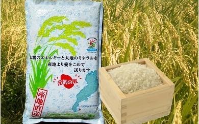 29A013 こだわり栽培米『元気の気』コシヒカリ白米 5kg