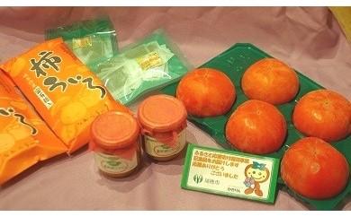 [№5787-0005]富有柿ぜいたくセット