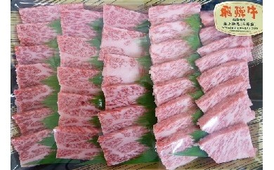 [№5787-0037]5等級 飛騨牛バラ肉 カルビ焼肉用 約500g
