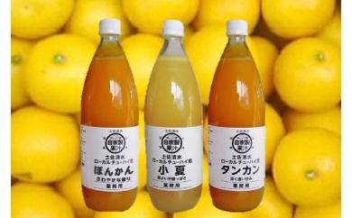 【P-1】オレンジ園の自家製かんきつ果汁飲料3本セット(希釈用)