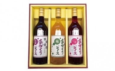 [№5767-0009]生坂村産手作りジュースセット