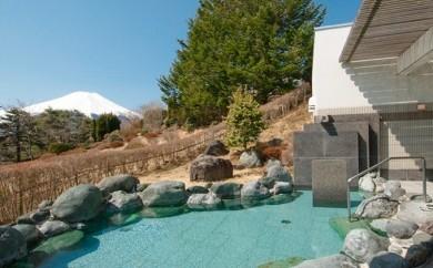 [№5768-0067]温泉入浴と お食事・休憩プラン(2名様)