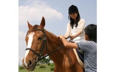 3-2 愛知牧場の引き馬回数券(大型)