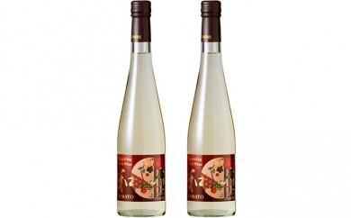 [№5661-0038]スパークリング梅ワイン2本セット