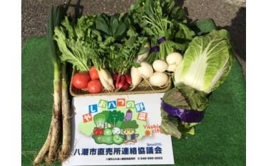 [№5763-0017]安心・安全・新鮮 八潮野菜 旬おまかせセット ~やしお八つの野菜~ ※クレジット決済のみ※