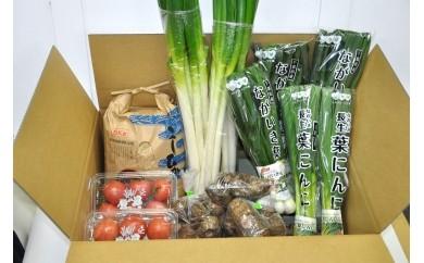 季節の野菜と新米の玄米5kg詰め合わせ