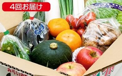 [№5644-0077]【4回お届け】福島の季節の野菜・果物詰め合わせ